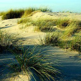 Schattenspiele von Ostsee Bilder