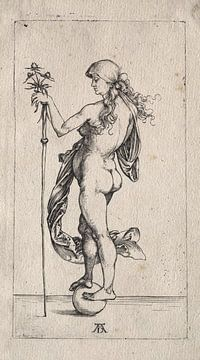Het kleine geluk, Albrecht Dürer van De Canon