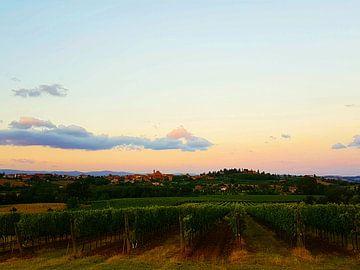Toscaans landschap von Danielle Bosschaart