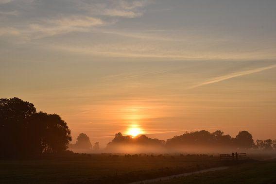 Sonnenaufgang im August