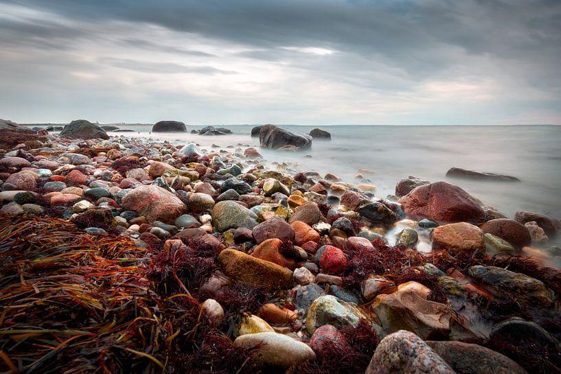 De rode kust, kust van Enø (Denemarken) van Bart Sallé
