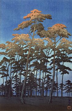 Hoge bomen tegen een blauwe lucht, Hikawa park in Omiya, Japan,  Kawase Hasui, 1930 van Roger VDB