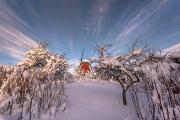 Schwedische Windmühle im Winter von Marc Hollenberg