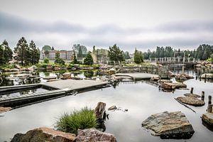 Paradijs voor de zeebaarzen in het Dolfinarium in Harderwijk