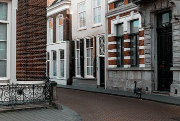Den Bosch Hoek Peperstraat-Oude Dieze van Jacq Christiaan