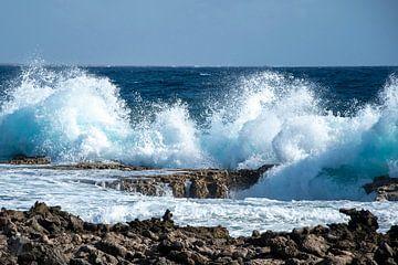 Zee aan de kust van Bonaire van Henk Zielstra