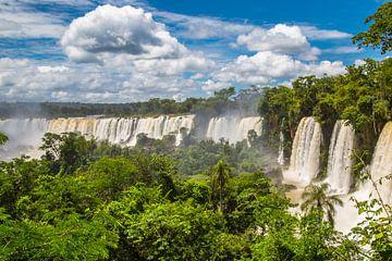 Iguazu Wasserfälle in voller Pracht von Peter Leenen