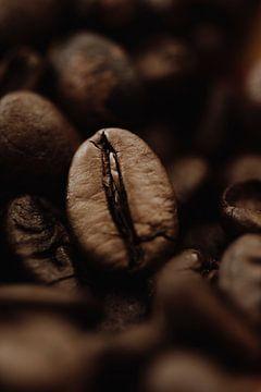 Koffieboon van