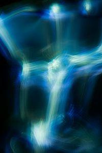 Blauwe en Witte Hersengolven