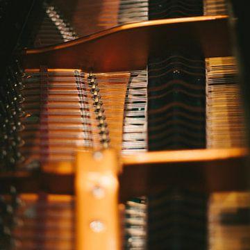 Piano von Colin van der Bel