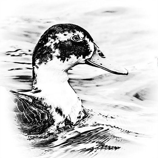 Duckface ......  van Art by Jeronimo