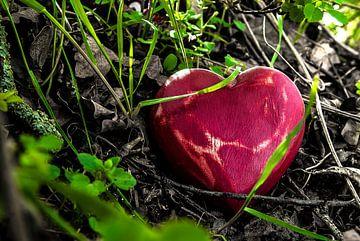 Liefde = verborgen in het struikgewas van