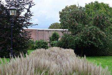 Un chemin d'herbe sur Gerard de Zwaan