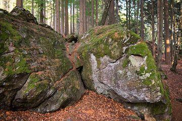 Rotsblokken in het bos, Bayerischer Wald, Duitsland van Ger Beekes