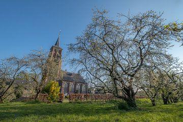 Kerk Heesselt van Moetwil en van Dijk - Fotografie