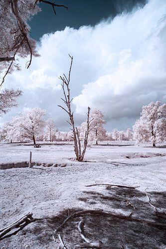 infrarood landschap met indrukwekkende lucht