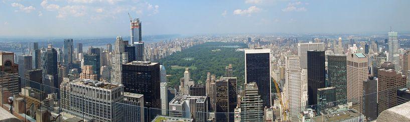 New York panorama van Carel van der Lippe