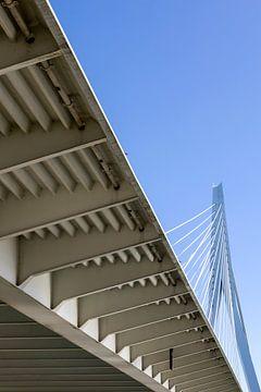 Erasmusbrug Rotterdam (kleur) van Rick Van der Poorten