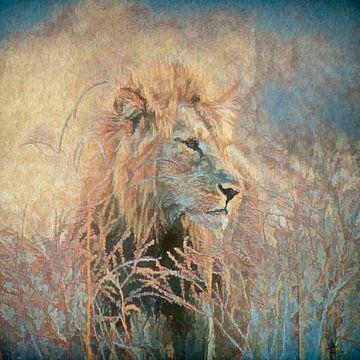 Leeuw in het hoge gras. van Francis Dost