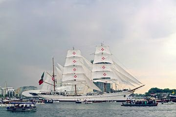 Sail Amsterdam 2015 van Marianna Pobedimova
