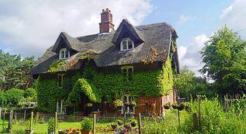 ivy-covered house on the way in suffolk von Babetts Bildergalerie