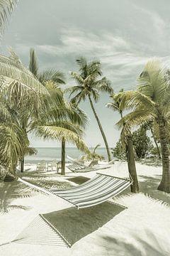FLORIDA Traumhafter Ort | Vintage von Melanie Viola