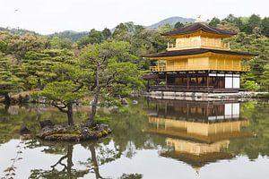 Kyoto Japan van