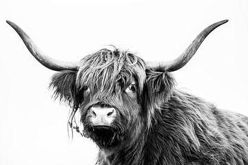 Schottischer Highlander in Schwarz und Weiß von Caroline De Reus