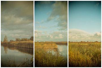 lauwersmeer triptychon 1 von anne droogsma