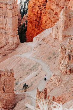 Amerika Grand Canyon in Oranje Tinten van studio KELBEL