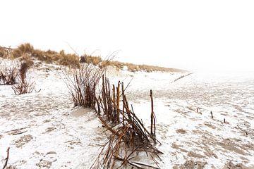 Ameland duinen in de sneeuw 04 van Everards Photography