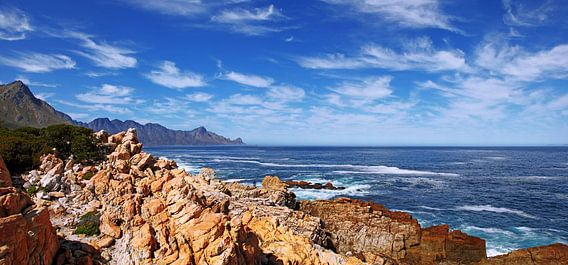 the coastline near Cape Town South Africa