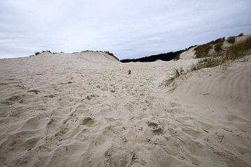 Sand von Erik Reijnders