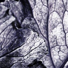 Genarbte Blätter von Henriette Mosselman