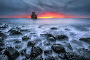 Zachte kust, IJsland van FineArt Prints | Zwerger-Schoner |
