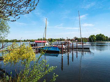 Hafen mit Boote in Werder an der Havel von Animaflora PicsStock