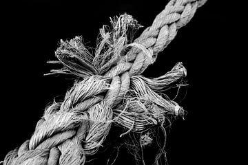 Der Knoten von Rolf Pötsch