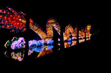 Chinese draak van licht van Damian  Dekker