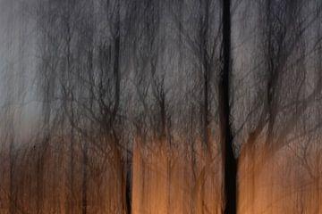 Sonnenuntergang von Ivette Braem