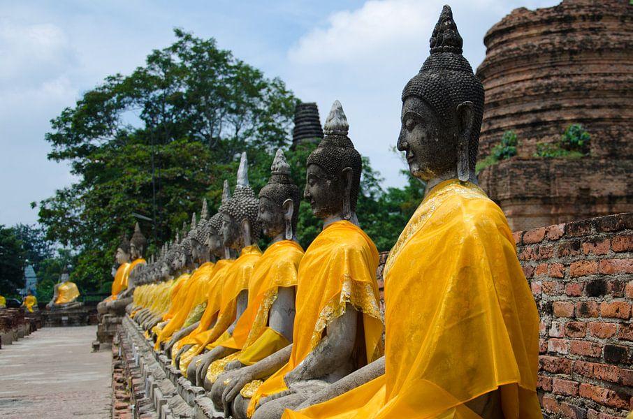 Boeddha's op een rij gekleed in een goudkleurig gewaad