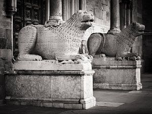 Zwart-wit fotografie: Kathedraal van Parma