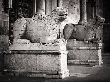 Zwart-wit fotografie: Kathedraal van Parma van Alexander Voss