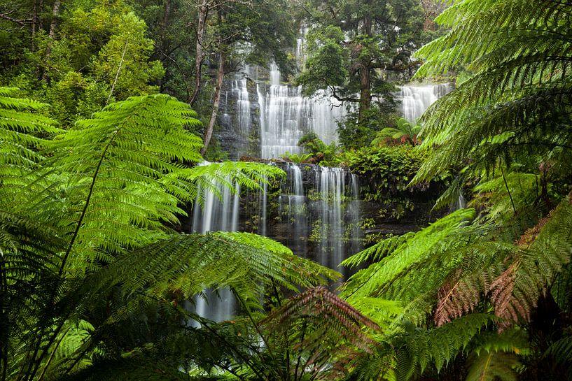 Schönster Wasserfall - Russell Falls - Tasmanien - Australien - Mount Field National Park von Jiri Viehmann