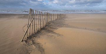 Sand von Arjan van Duijvenboden
