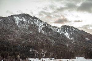 Bergen in Oostenrijk van
