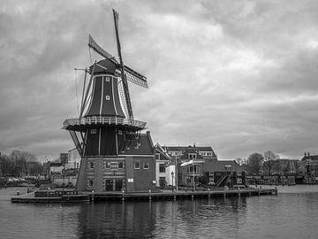 Mühle in Haarlem von Martijn Tilroe