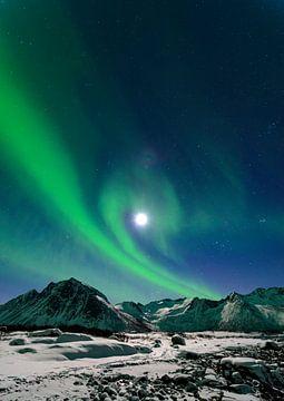 Nordlicht, Polarlicht oder Aurora Borealis im Nachthimmel über der Insel Senja in Nord Norwegen von Sjoerd van der Wal