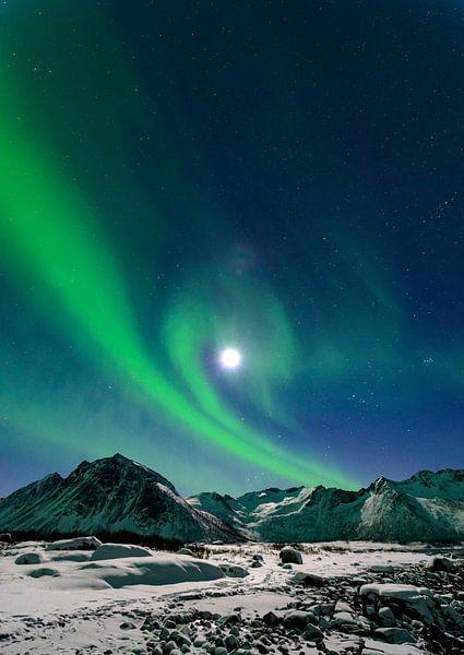 Noorderlicht, Poollicht of Aurora Borealis in de nachtelijke hemel boven het eiland Senja in Noord N van Sjoerd van der Wal