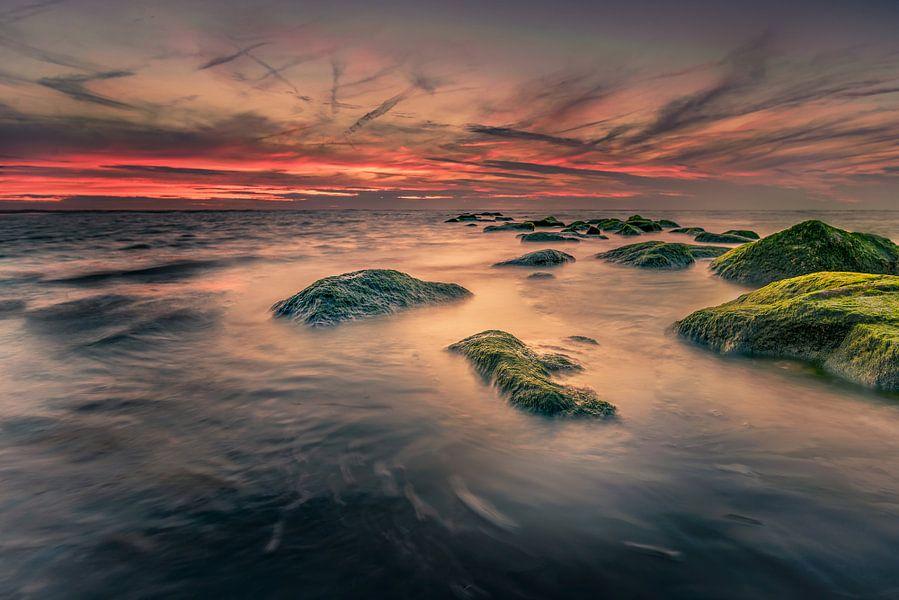 Hoog water van Machiel Koolhaas