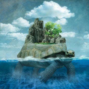 The Tortoise Island van Marja van den Hurk